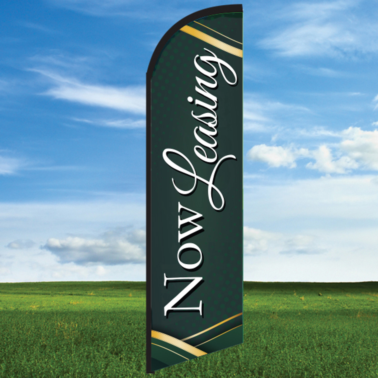 Evergreen: Now Leasing-Windleasers 24/7 Widebody Flag