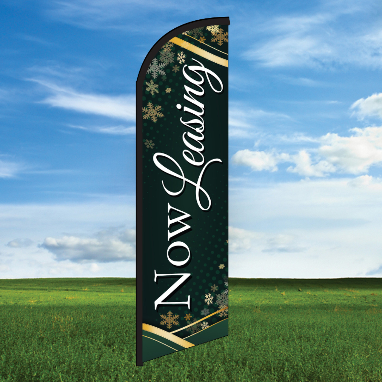 Winter Evergreen: Now Leasing-Windleasers 24/7 Widebody Flag