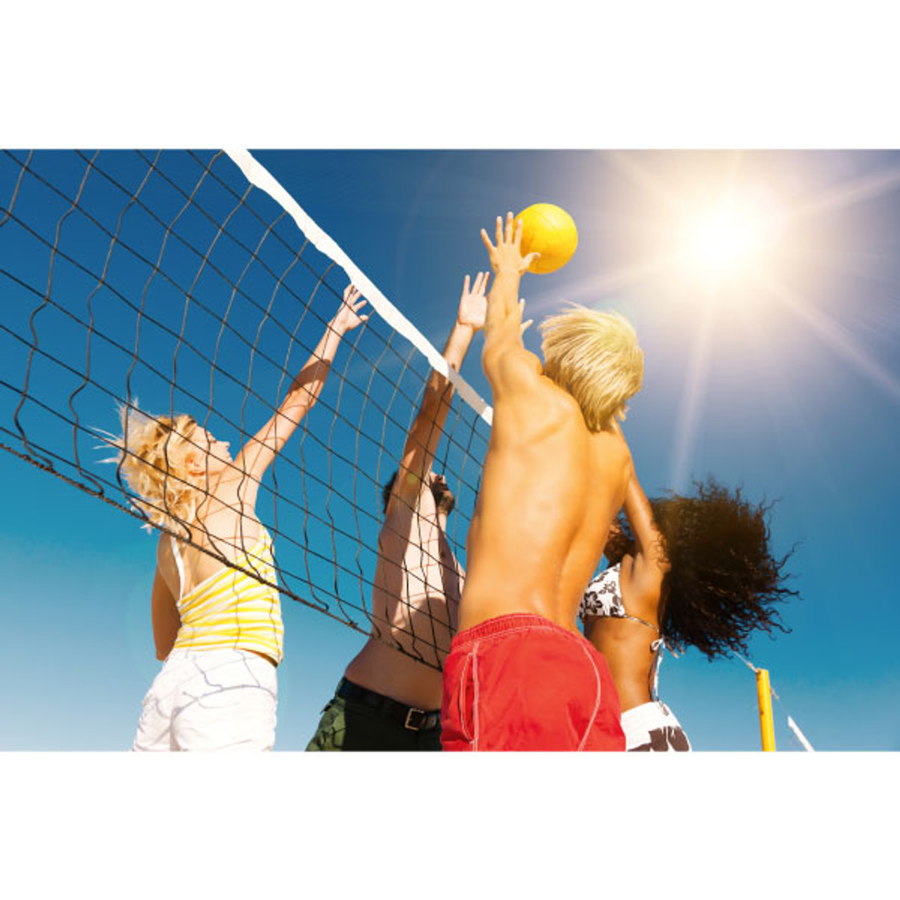 Community Volleyball Net