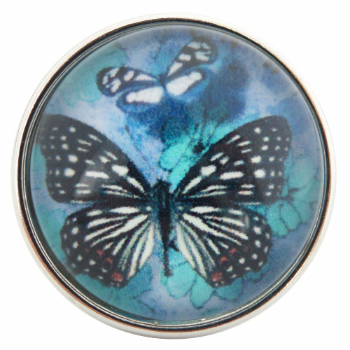 Butterfly in Glass Snap