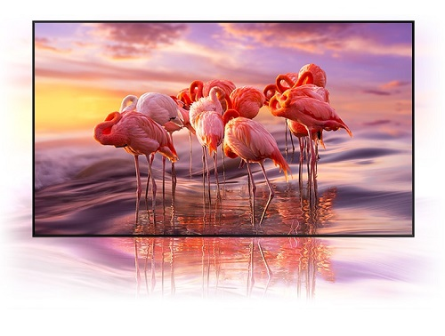Samsung 100% Colour Volume Picture Performance for QLED TVs