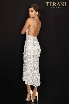 Terani Couture 2011C2013