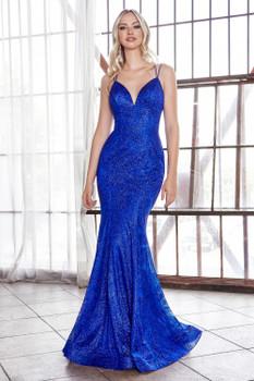 Cinderella Divine CB049