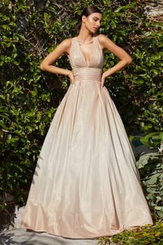 Cinderella Divine CW222