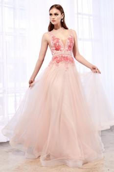 Cinderella Divine A0072