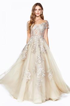 Cinderella Divine C20