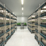 What Type of Shelving Does Your Cannabis Grow Need?
