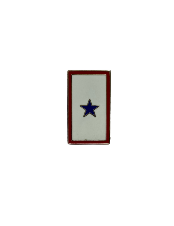 1 Blue Star Service Pin