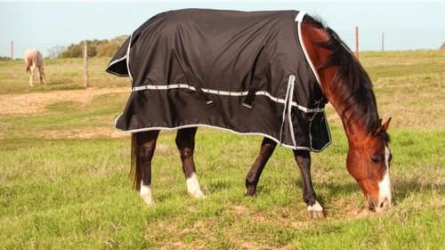 Windbreaker Turnout Blankets
