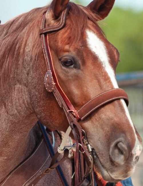 Copper Buckle Headstall