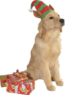 Pet Elf Hat with Ears
