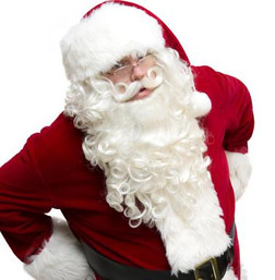 DLX Santa Wig/Beard