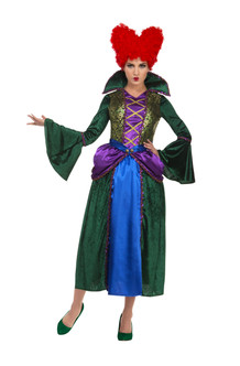 Women's Evil Green and Purple Witch Costume
