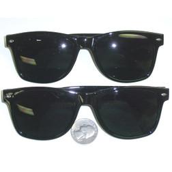 Wayfarer Blues Smoke Glasses