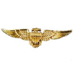Metallic Aviator Pin