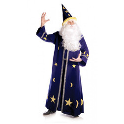 Plus Size Spell Master Wizard costume