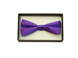 Bowtie In A Box Purple at the Costume Shoppe