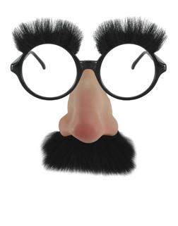Groucho Marx Glasses