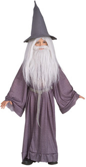 Children's Gandalf the Grey Lord of the Rings Costume