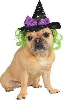 Tiny Witch Hat Halloween Pet Costume