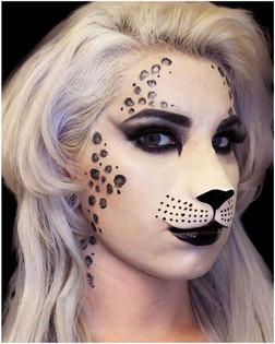 Large Cat Face