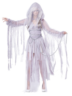 Haunting Beauty Ladies Ghost costume