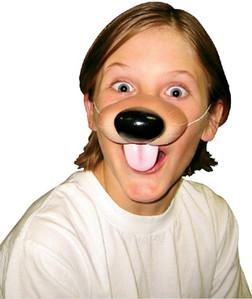 Cute Creatures Puppy Dog Nose
