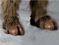 Hoof Hearted Feet Shoecovers