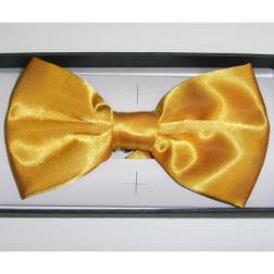 Cheerful Yellow Satin Bow Tie