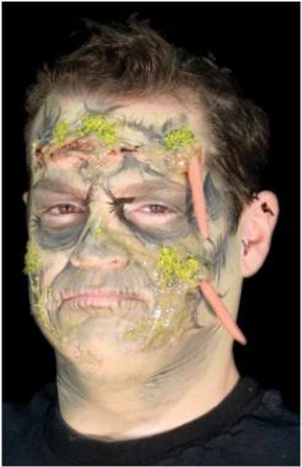 Flesh Eater Zombie Kit