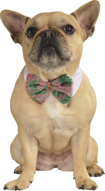 Pet Poinsetta Bow Tie