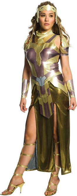 Ladies Hippolyta Wonder Woman Costume