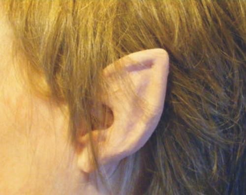 Elf Flexi Ears