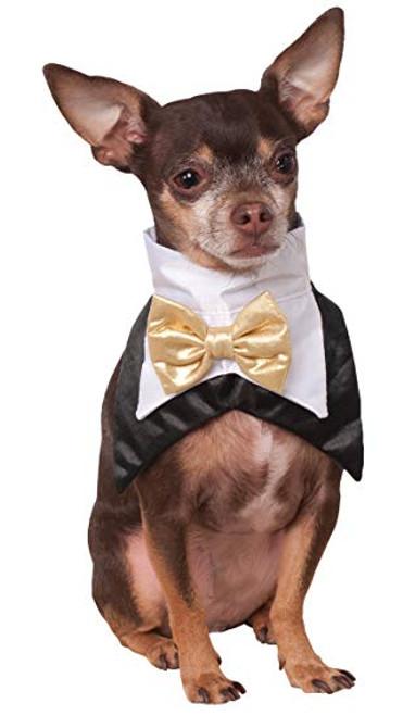 Pet Bowtie Collar