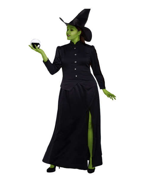 Classic Witch Plus Costume