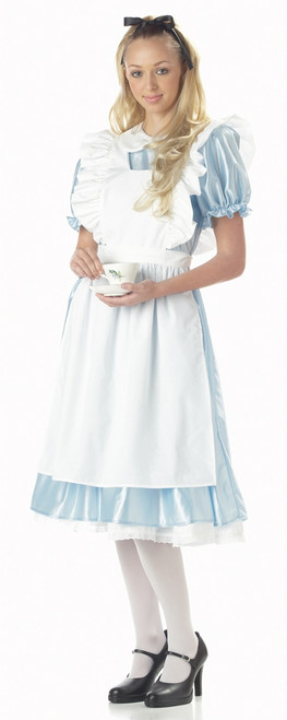Traditional Alice in Wonderland Costume