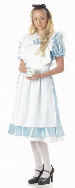 Traditional Alice in Wonderland Costume