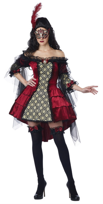 Mysterious Masquerade Ladies Costume