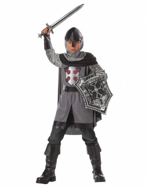 Dragon Slayer Knight Costume