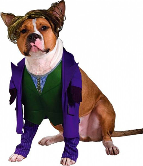 The Joker Pet Costume