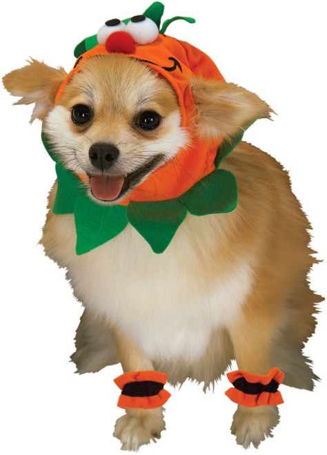 Halloween Pumpkin Small Dog Pet Costume