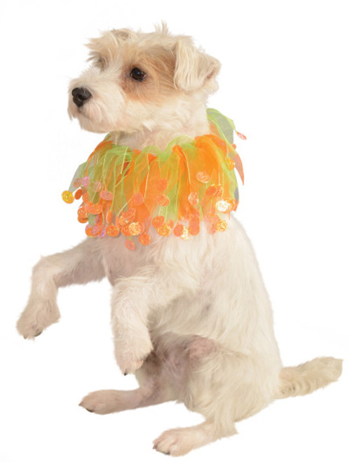 Pumpkin Collar Pet Costume