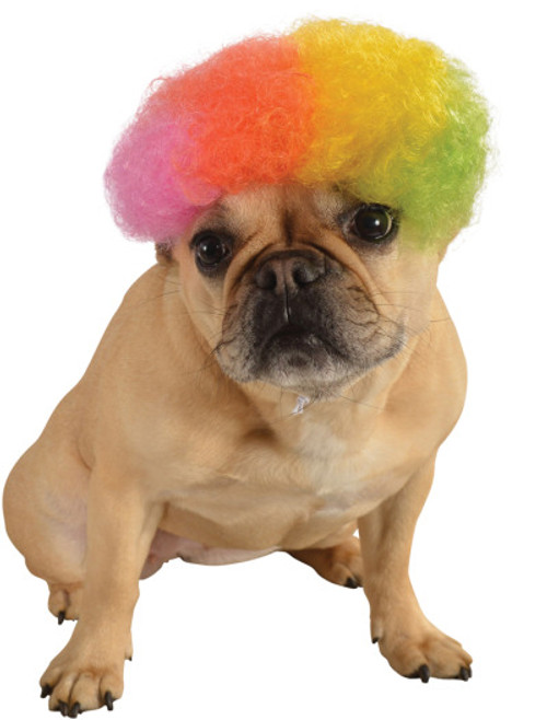 Rainbow Afro Pet Costume