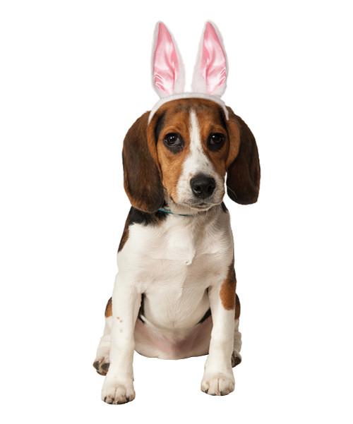 Pet Bunny Ears Easter Costume