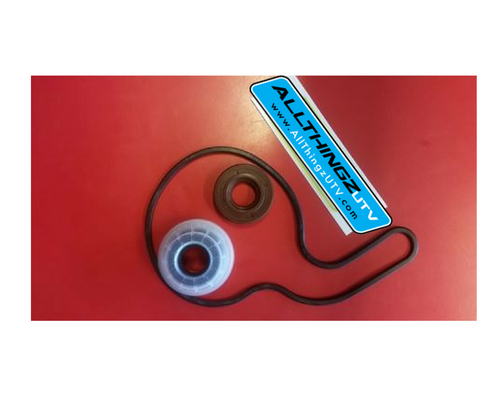 FREE SHIPPING  ARE YOU LOSING COOLANT OUT OF THE WEEP HOLE ON YOUR RZR ?    OEM WTER PUMP REBUILD KIT  Everything you need to rebuild your water pump on you 800, 800s, 8004 seater     1-3610075 SEAL-WATERPUMP15X36/40X20,FACE  ( mechanical seal)  1-5812571 SEAL-COVER,WATERPUMP  1-5412455  SEAL-OIL,15X35X8 rear seal that keeps water out of oil.