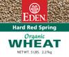 Hard Red Spring Wheat, Organic - 5 lb