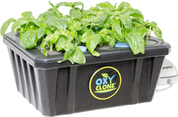 OXYCLONE 20 Site Cloning System