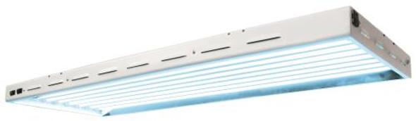 Sun Blaze T5 HO 48 - 4 ft 8 Lamp