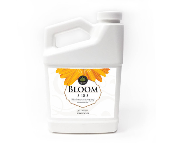 Age Old Bloom - 1 QT