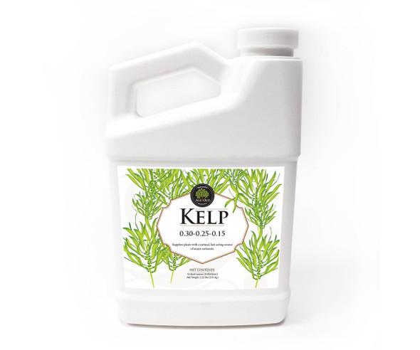 Age Old Kelp - 32OZ